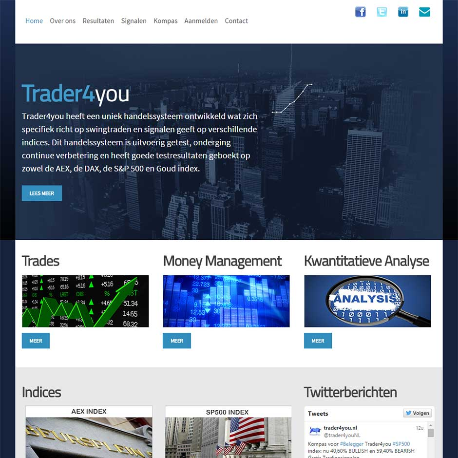 Topzone - portfolio website - Trader4you